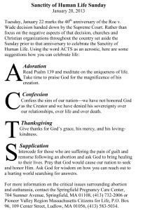 Sanctity of Human Life Sunday