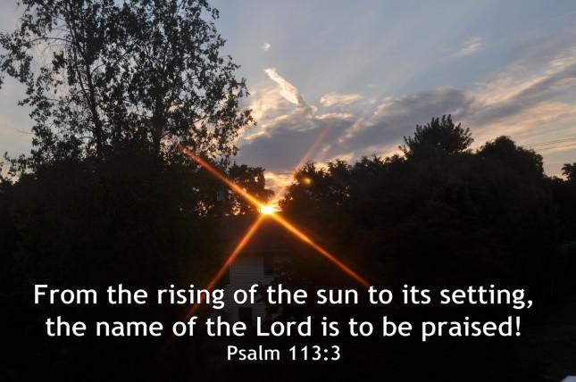 Psalm 113-3