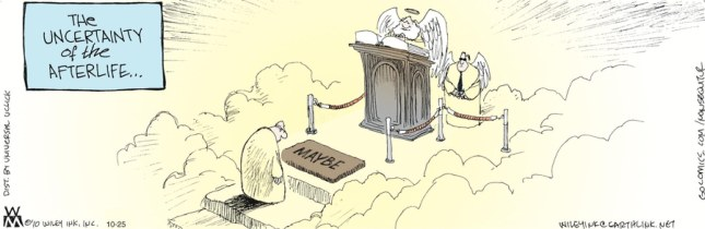 Non Sequitur - uncertainty of the afterlife