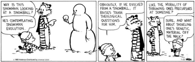 Calvin & Hobbes - snowman evolution