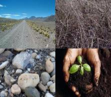 four-soils