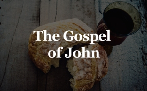 advancement-online-gospel-john