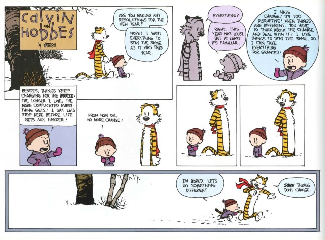 Calvin & Hobbes - Resolutions 2