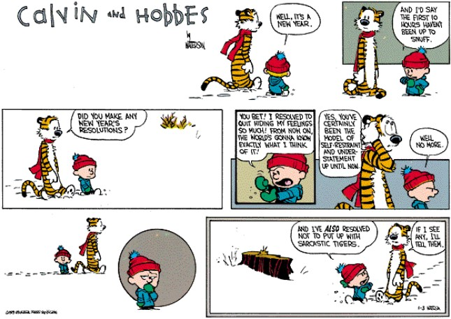 Calvin & Hobbes - Resolutions 7