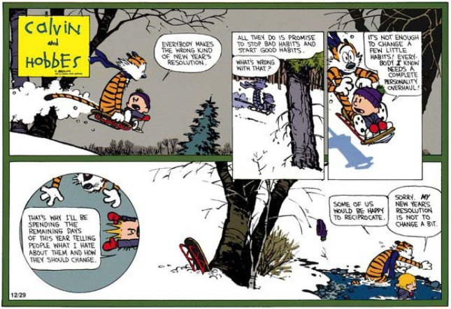 Calvin & Hobbes - Resolutions 8