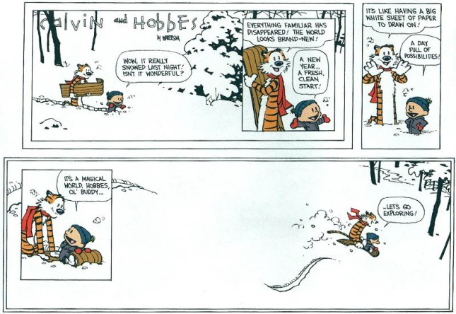 Calvin & Hobbes - Resolutions 9