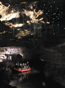 spellbounds-red-raft-and-glowworms